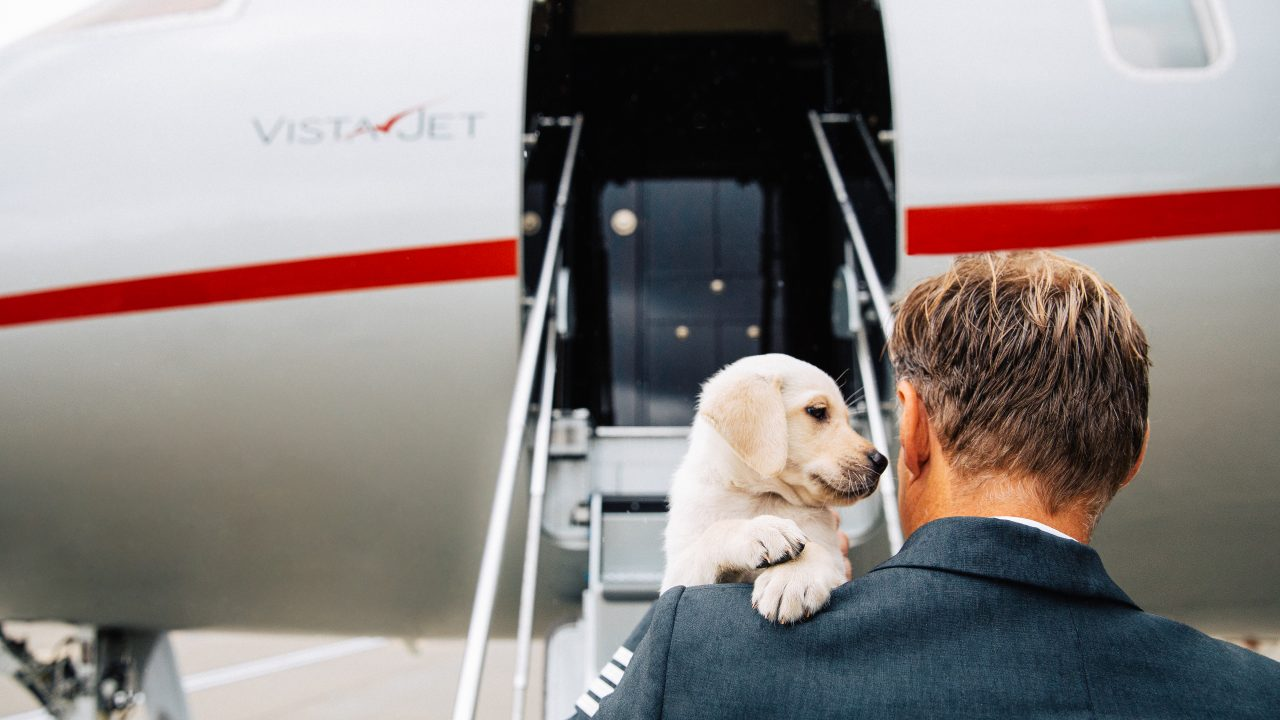 This Private Jet Company Pampers You, And Your Four-Legged Friends