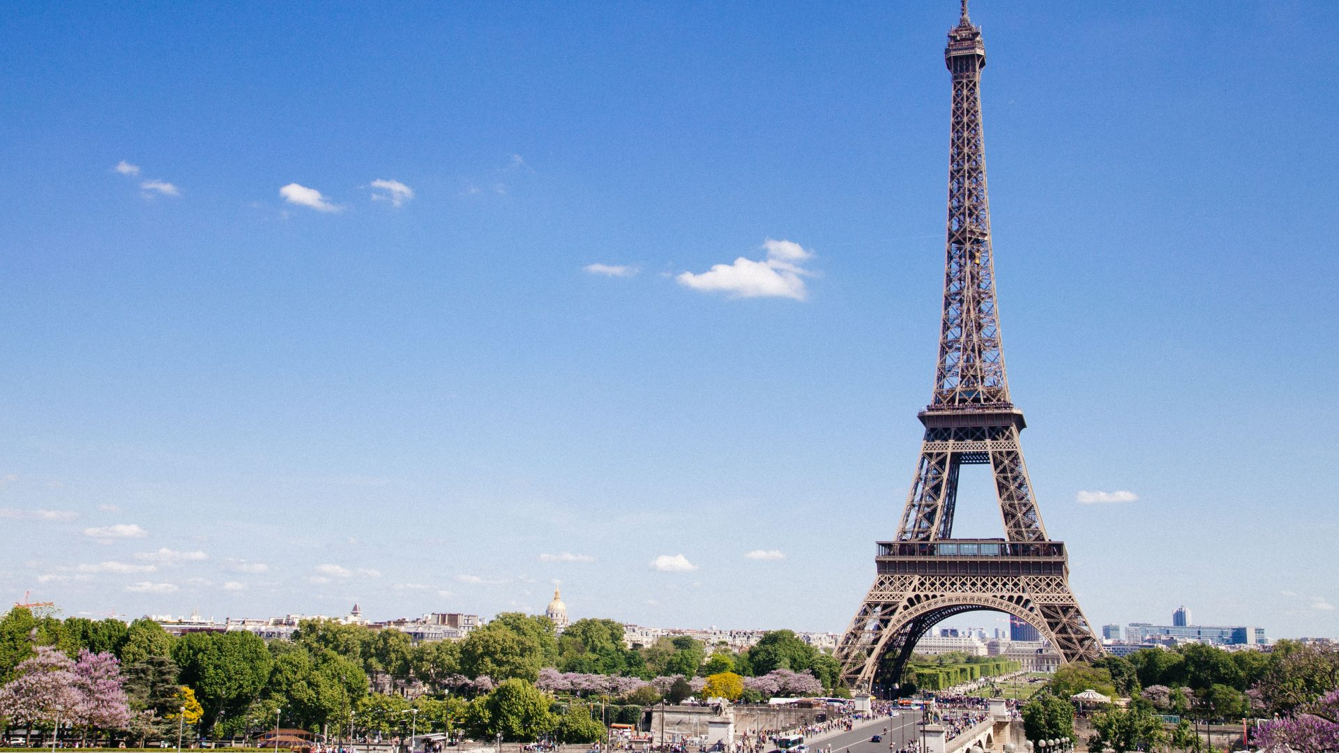 The Eiffel Tower Is Going To Produce Its Own Wine, With The First Bottle Available Next Spring